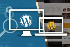 Optimising Your WordPress Website